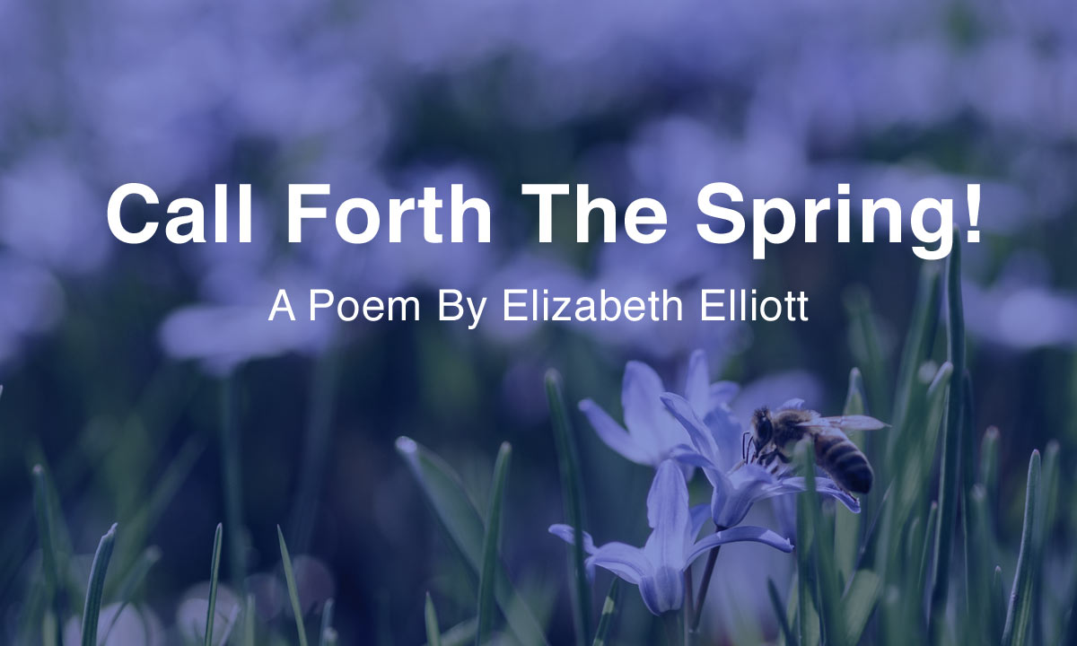 About Call Forth The Spring
