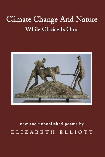 While Choice Is Ours Book Cover